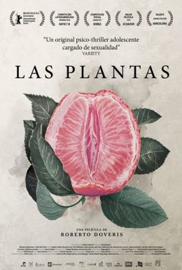 poster-plantas-260x385